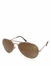 Gekko Sunglasses