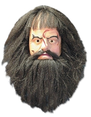Harry Potter Costume Accessory, Mens Hagrid Full Mask