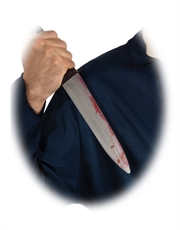 Halloween Costume Accessory, Mens Michael Myers Big Butcher Knife