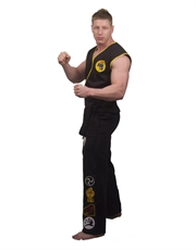Karate Kid Costume, Mens Cobra Kai Costume