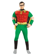 Teen Titans Costume, Mens Robin Muscle Chest Outfit