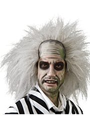 Beetlejuice Costume Accessory Mens Beetlejuice Wig