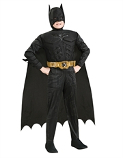 Dark Knight Rises Costume, Kids Batman Muscle Costume Style 2